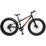 26 Zoll Coyote Skid Row 4.0 FAT TYRE Fatbike Bild 2